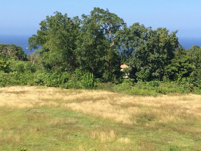 buying land in jamaica